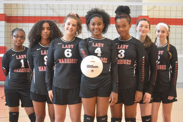 Girls Volleyball Team Image